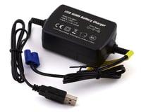 Dynamite NiMH 6C USB Charger EC3 Connector DYNC1061