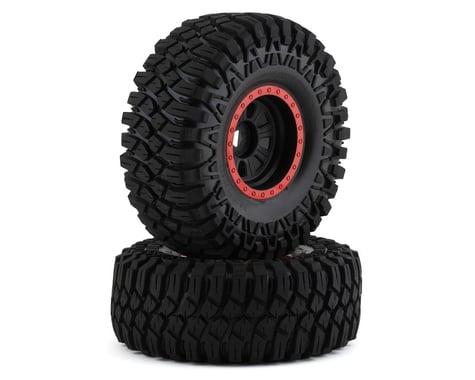 Losi Super Rock Rey Maxxis Creepy Crawler LT Mounted Tires LOS45031
